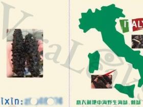 china-export-1