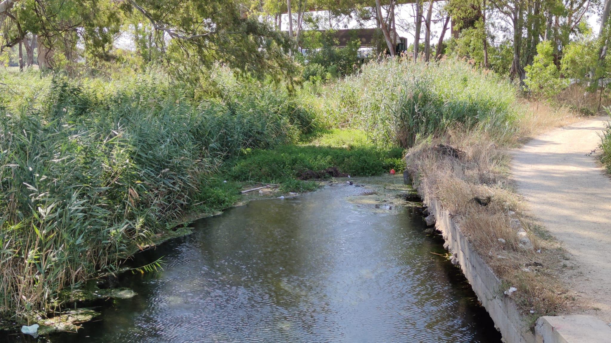 fiume-galeso-2